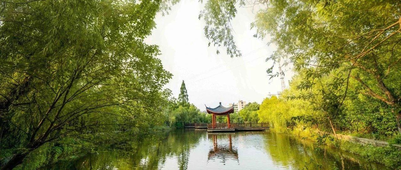 层林掩玉宇,繁花绕碧潭,麻城最浪漫的景区,一眼就能爱上