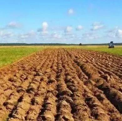 自家耕地上可以建房、建�B殖���?�P于耕地,你了解多少?