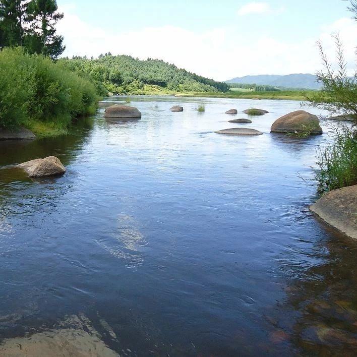 关于富顺安和村河水污染问题,官方回复来了!