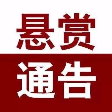 临泉公安发布悬赏通告!