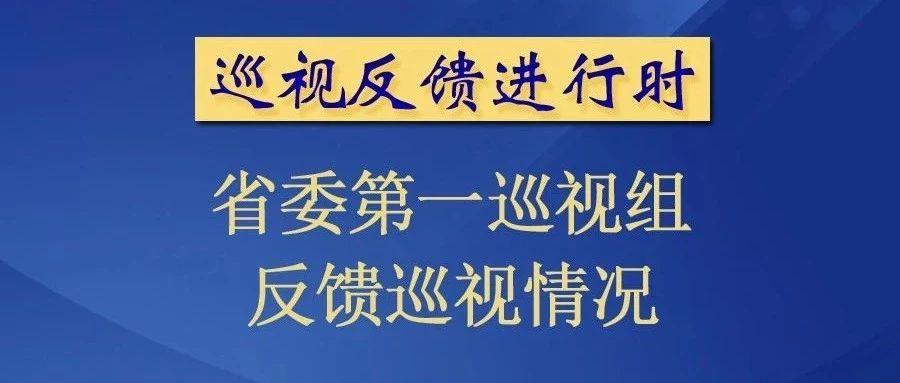 青海省委第一巡视组向乌兰、天峻县委反馈巡视情况
