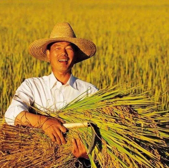 农场、合作社、农业公司有啥区别?补贴优势是什么?