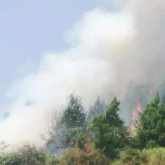 巴中城周边山上突发发生熊熊大火,最后......