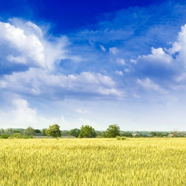【观点】修法对深化农村土地制度改革有重大意义