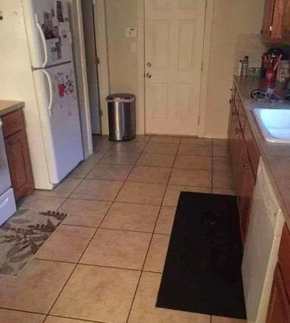 有网友表示,经常找不到她家狗在哪...