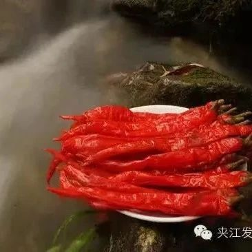 """四川省""""天府旅游美食名录""""发布夹江这两道美食榜上有名!"""