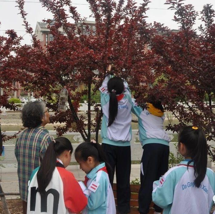 古林街凯旋苑社区开展争做爱鸟使者活动