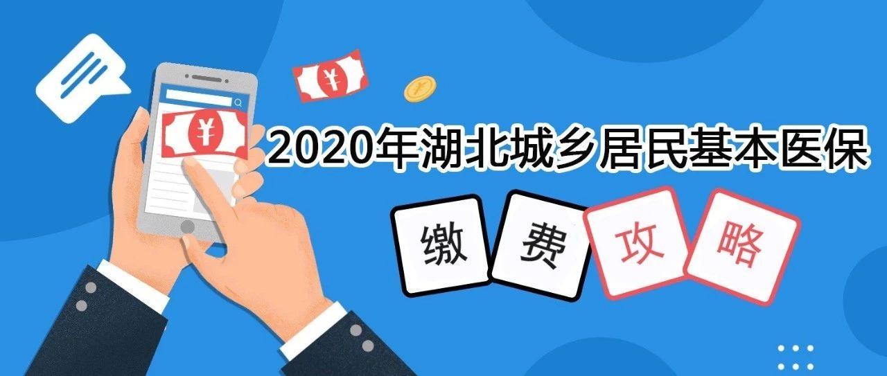 2020年,湖北省城乡居民医保这样缴费!
