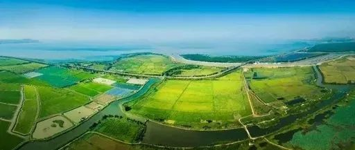 投资3900万元,新蔡一湿地项目招标建设啦!