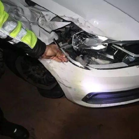 神操作!一男子深夜撞了警车后不但不道歉,第一反应居然是爬起就跑!