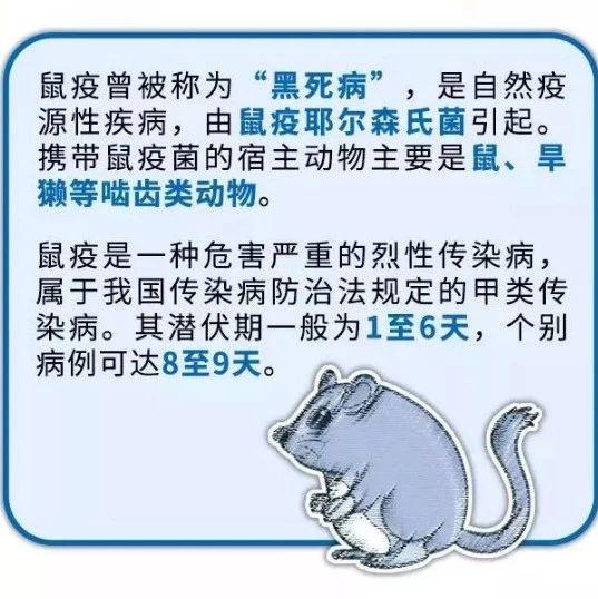 """【�P注】�""""鼠""""色�大可不必,防控重�c全在�@里!"""