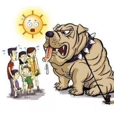 @广饶人:夏季犬咬伤高发要警惕,需紧急处理及时就医