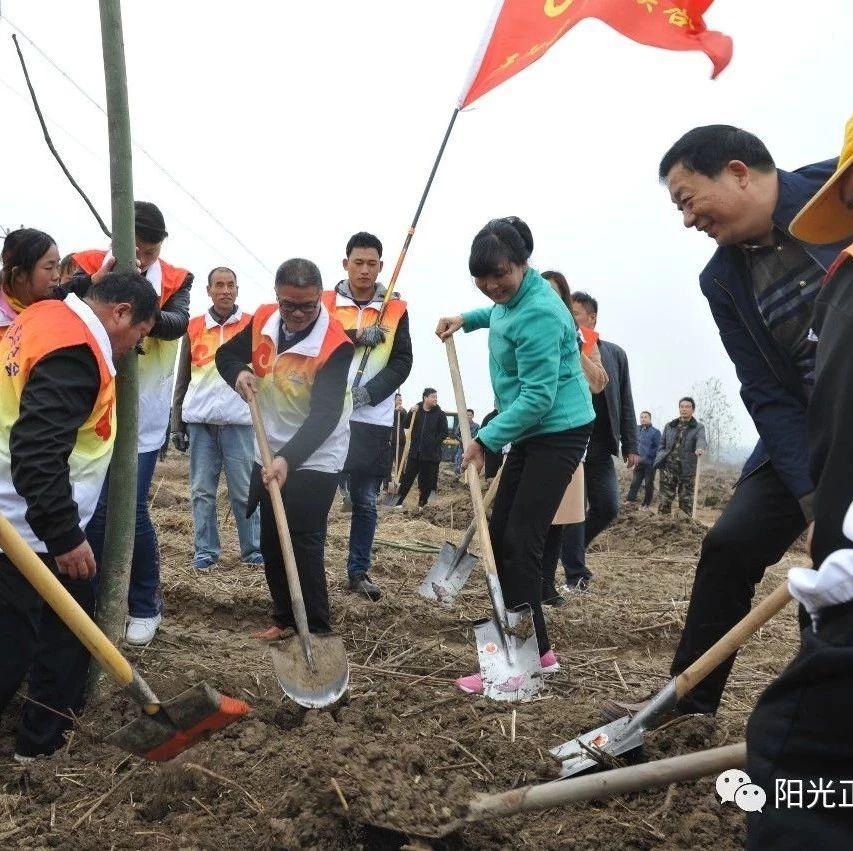 【关注】行动起来,跟县四大班子领导一起义务植树去!