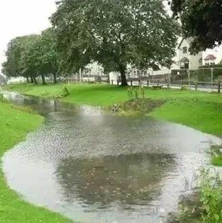 辛集位伯镇将建设雨水蓄水塘工程!公开竞争性磋商公告