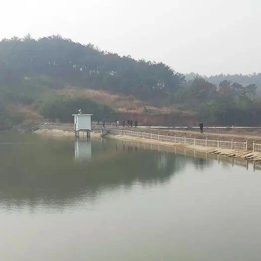 望江县八座水库除险加固工程通过完工验收