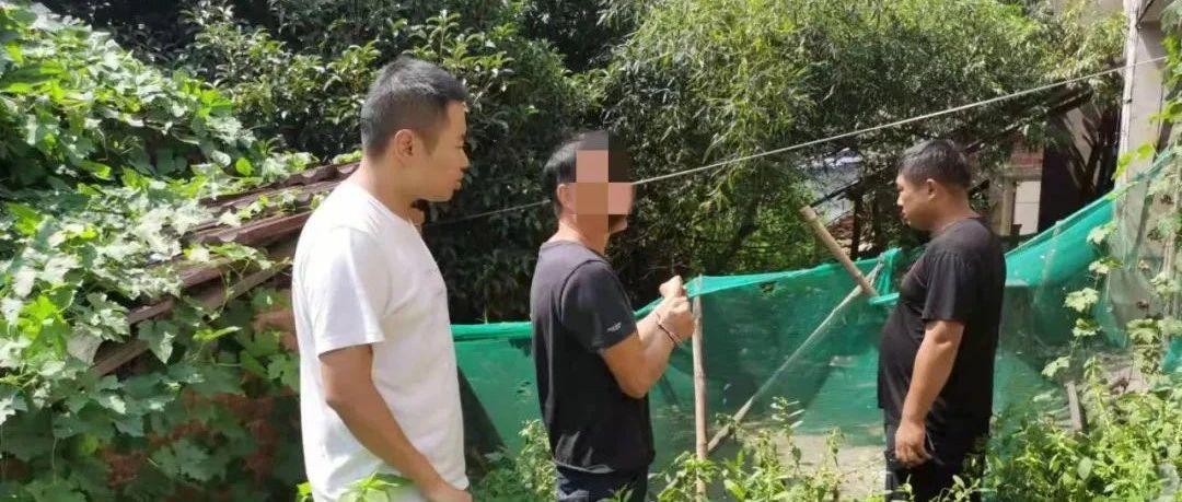 望江赛口:一男子偷盗土鸡作案30余起被抓!