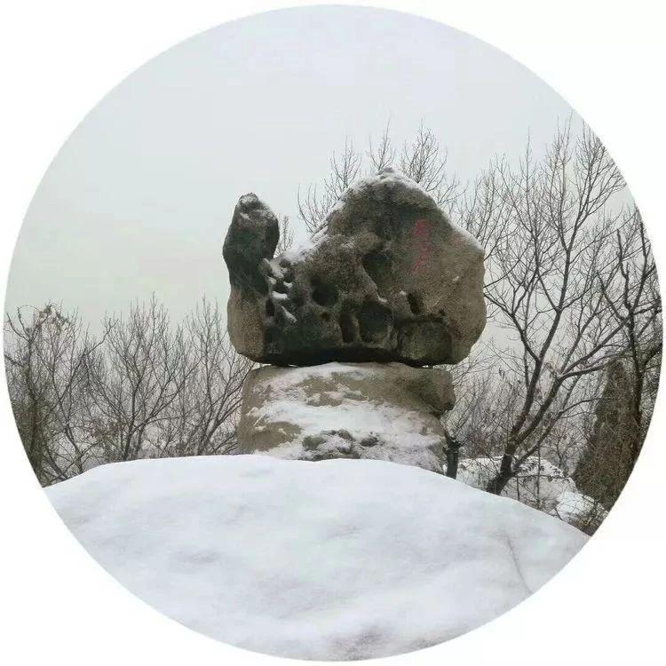 天降一场雪,峄山美如画。别看雪不大,景色可不差