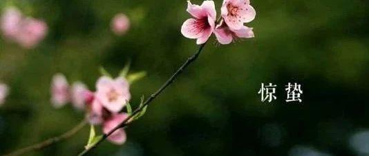 【未名国学丨未名乱弹10】读唐诗《观田家》懂惊蛰文化!