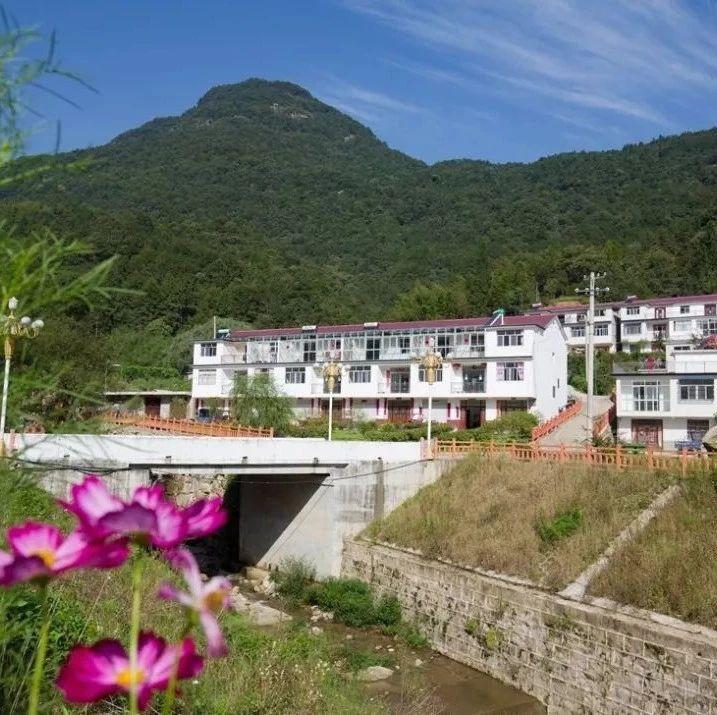 老家金寨丨汤店村、长春村、仙桃村