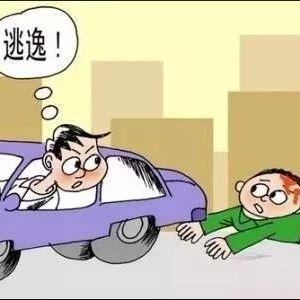 六安一男子酒驾吊销驾照后,又无证酒驾致人死亡逃逸,最终……
