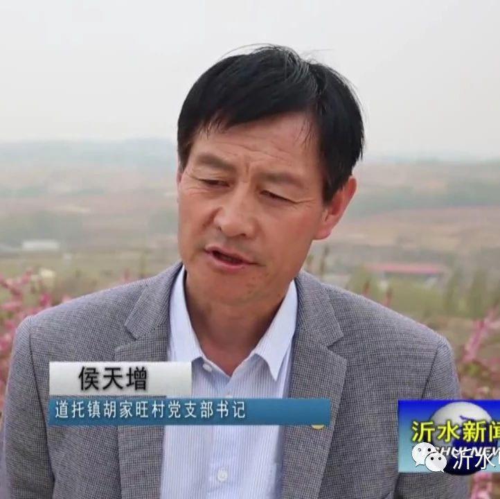 省劳模侯天增――胡家旺村的致富领头雁