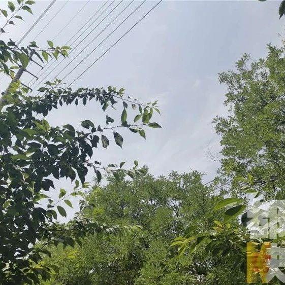 雨要来啦!陕西多地将迎阵雨或雷阵雨天气!省人社厅:不得因高温天气工时缩短降低工资