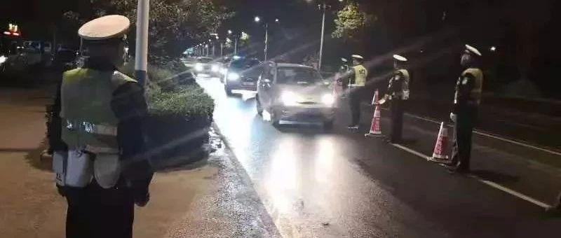 """14日晚,11名""""醉猫""""落网"""