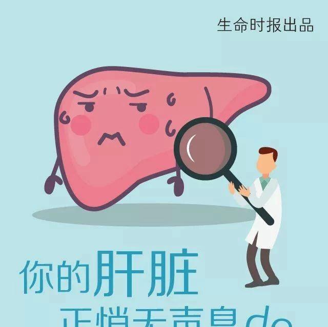 """你的肝脏属于""""易胖体质"""",7种肝脏最易过劳肥!澳门威尼斯人平台娱乐人看看有木有你......"""