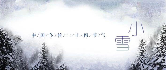 今日小雪,�w雪如花落�q�q又年年