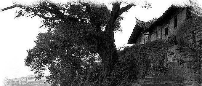 震惊!80年代的内江是什么样?这些老照片带你穿越内江30年