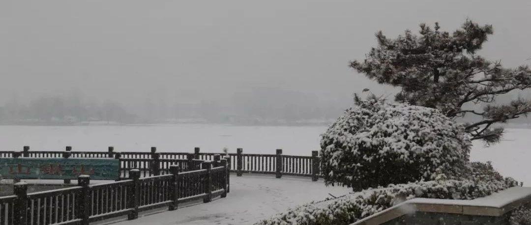 2019年睢县第一场雪!美景如画