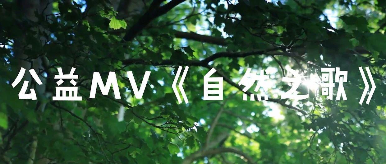 春苗・灵动||公益MV《自然之歌》正式发布!