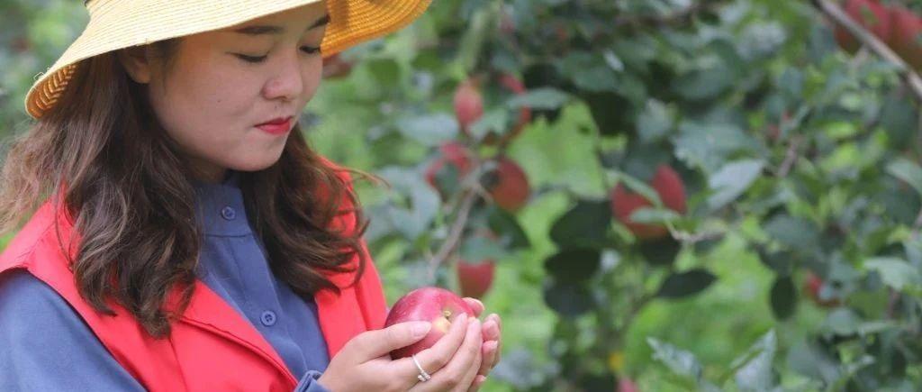 原产地四川大凉山盐源红将军苹果,5斤彩箱装中果(70-80mm)24.8元包邮包售后。