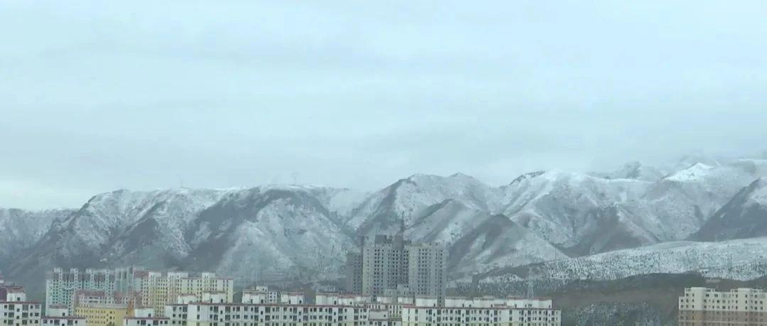 甘肃下雪了!霜冻+中雪+大风已在路上!