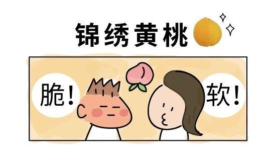 听说吃软桃和吃脆桃的掐起来了!所以你们是没吃过黄桃吗?