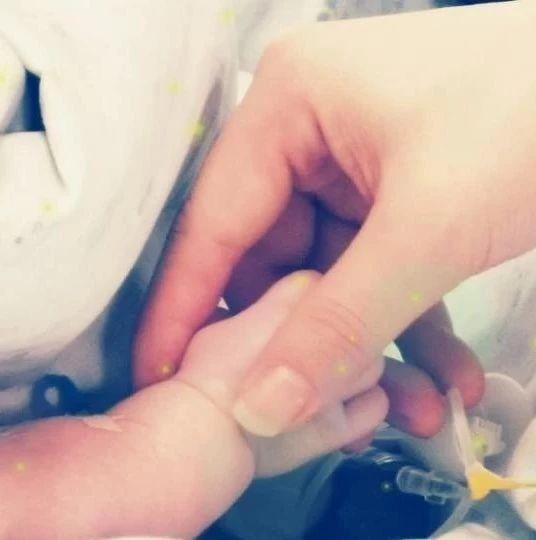 泪目!出生6天的小毛豆捐献器官,感谢小天使来过这个世界
