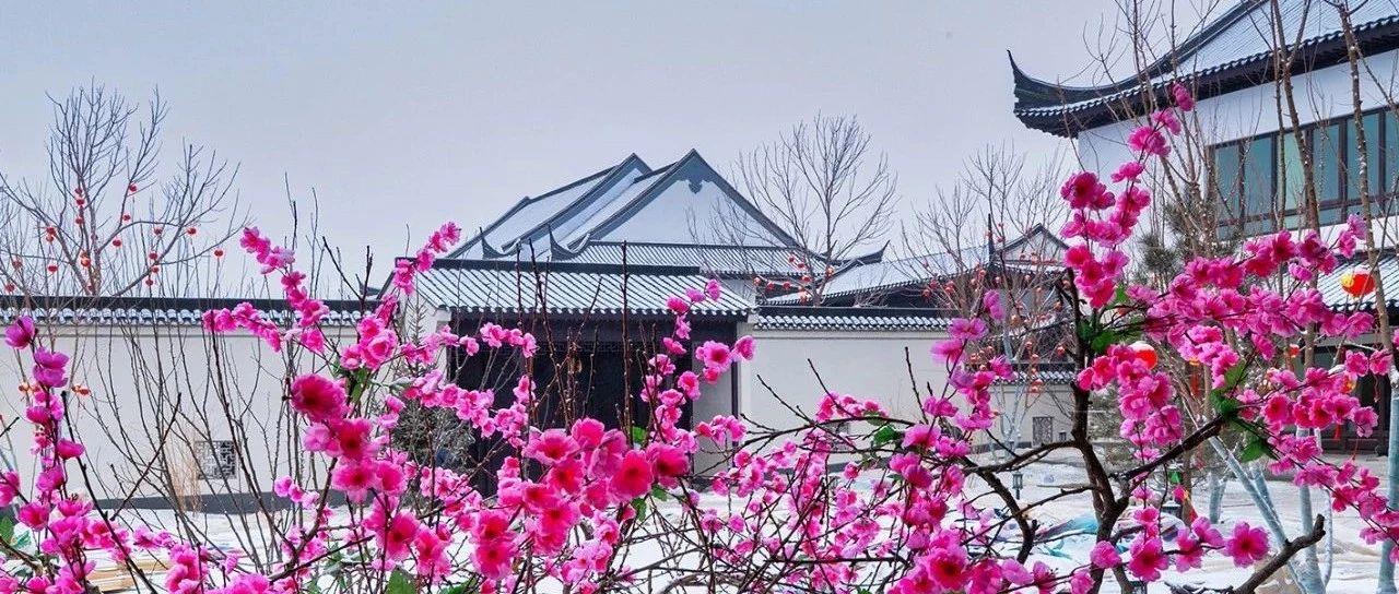 雪后初晴丨忠恒桃花源,飘了一场中国诗词里的雪