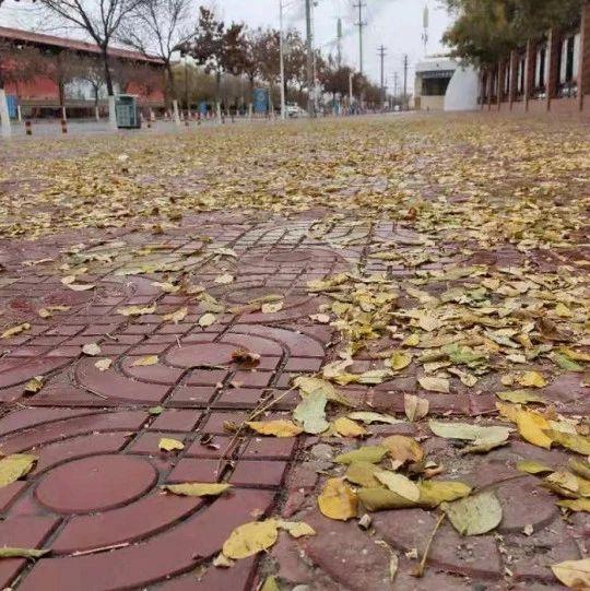 大风+寒潮过后平川的天气变化!