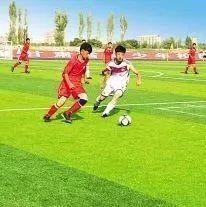 2018年全国青少年校园足球特色学校拟定名单公布,平凉16所学校在列!