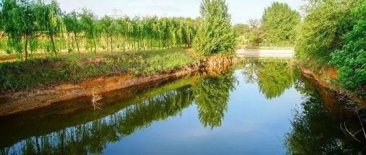 剧透:大新安又一个好玩的地儿!3000余亩的大型生态园,了解一下