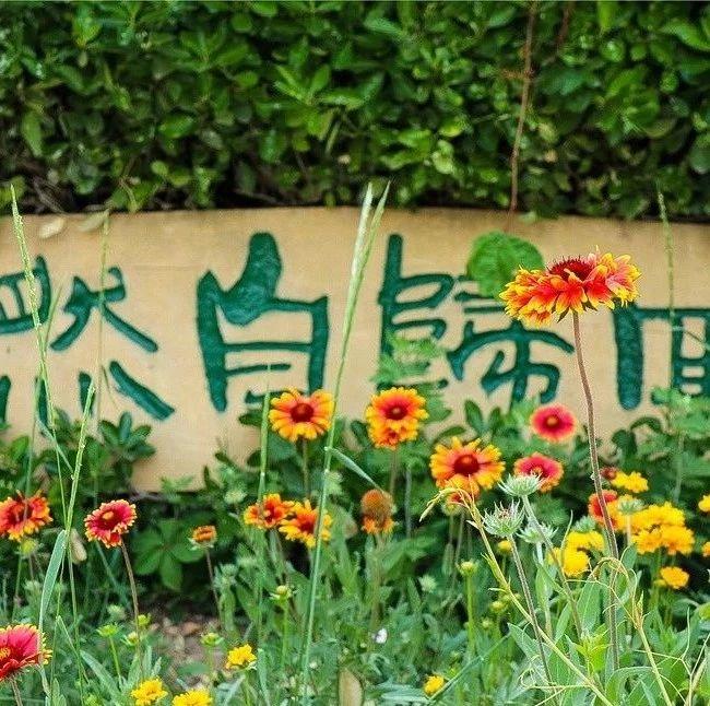 长岛:多彩秋色,回归自然!
