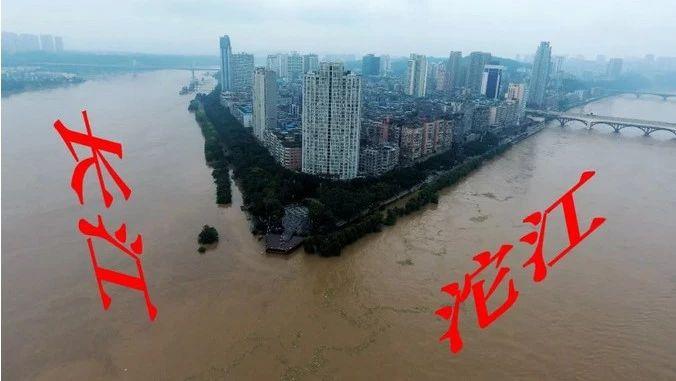 今日泸州一片汪洋,或为6年来最高水位!(视频+多图)