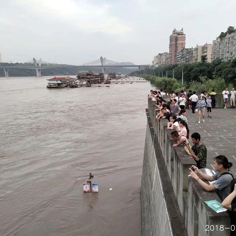 人潮如织|泸州洪峰过境,滨江路单碗广场沦陷
