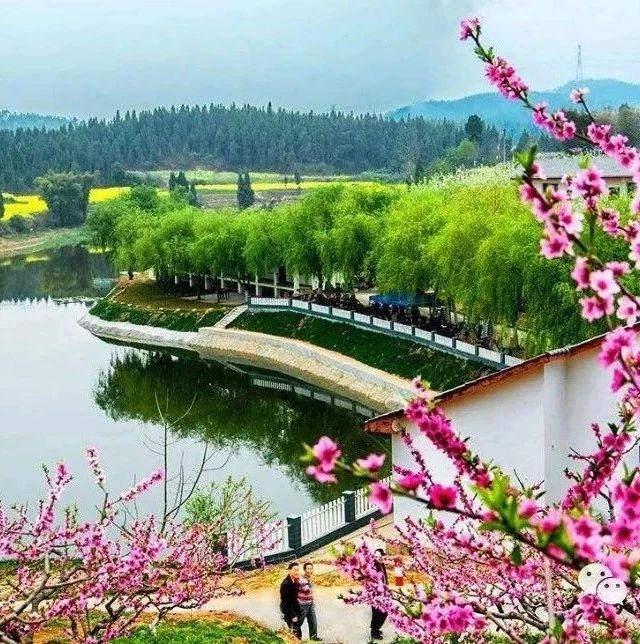 总投资3.5亿,占地35000亩,漯河将新建一座超大型农业公园!
