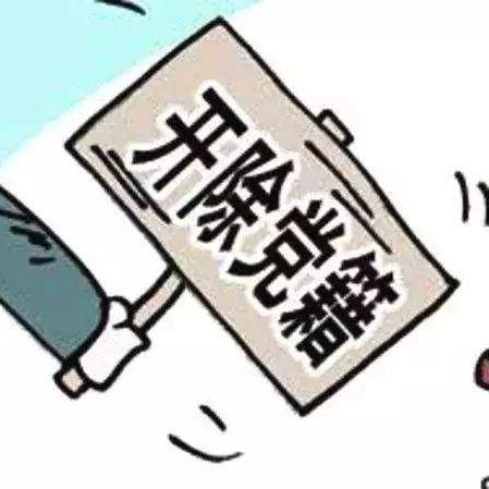 漯河一村党支部书记被开除党籍