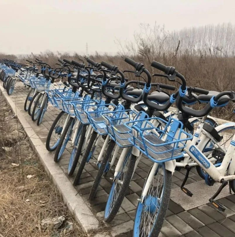心疼人!漯河这个地儿惊现近千辆共享单车!
