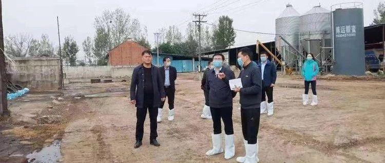 宝丰县财政局联合畜牧局对我县粮改饲项目进行验收