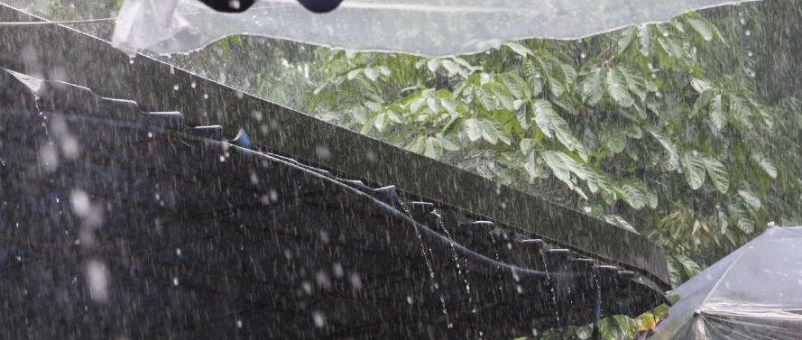 最低3℃!大�L+降雨!江西天�怦R上大反�D…