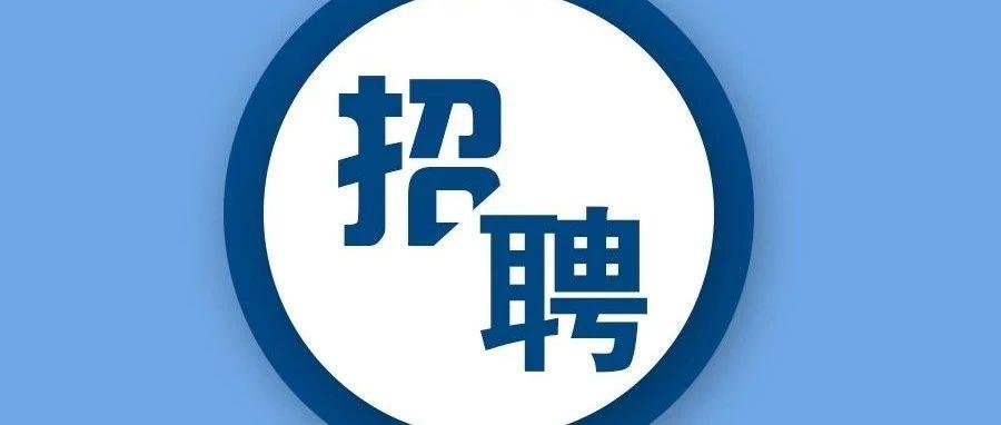 安徽省2019年特岗教师招聘空缺计划征集志愿公告,望江县空缺一人!