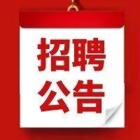 62名!秦州区公开招聘城镇公益性岗位人员